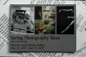 Waverly Small Works Gallery